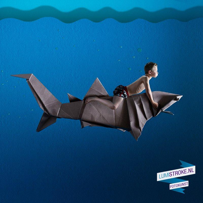 haai-af.jpg